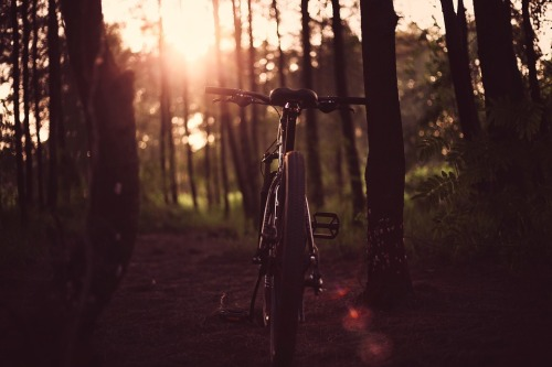 bicycle-1869432_960_720